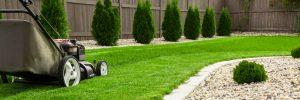 Lawn Service Auburn